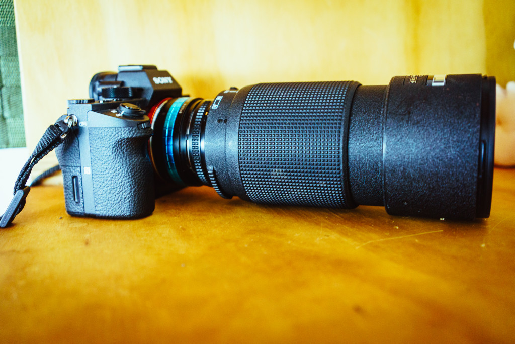 My ancient 80-200mm f/2.8