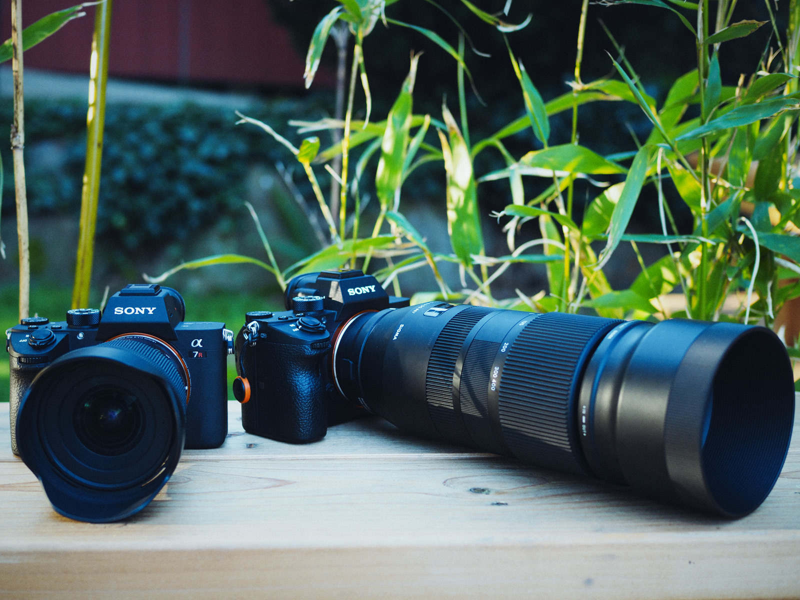 sigma 100 400 goes to work on a budget sony mirrorless pro. Black Bedroom Furniture Sets. Home Design Ideas