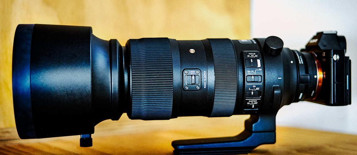SIGMA 60-600mm: a Range for Almost Anything